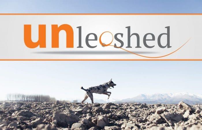 """Unleashed: """"Heel"""" (Week 2)"""