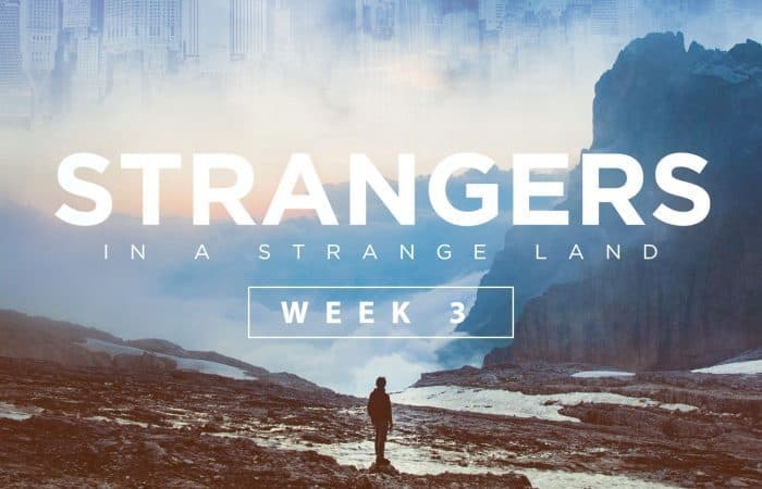 Strangers in a Strange Land: Week 3
